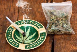 Netherlands drug policy